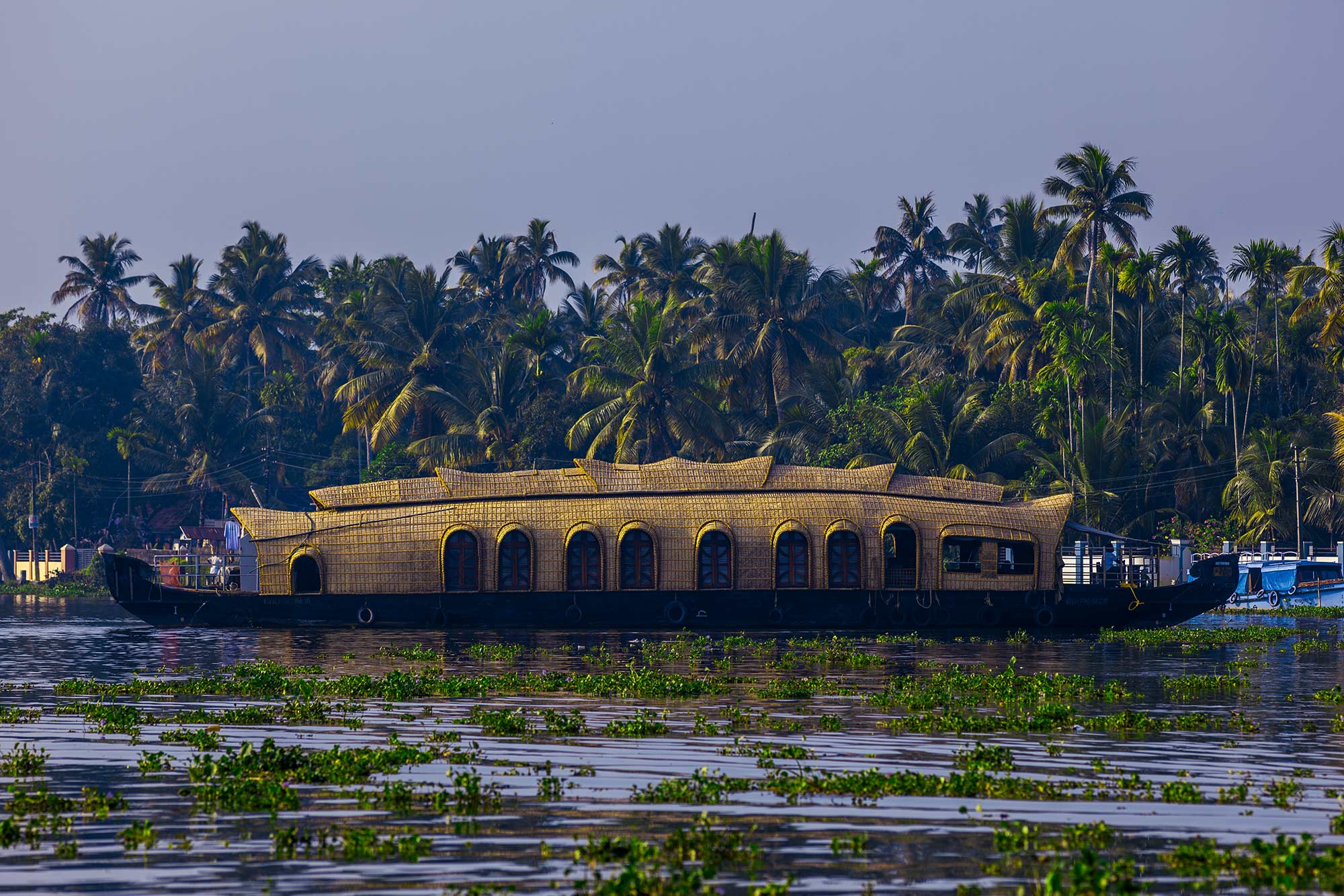 KERALA II: Fort Kochi y los backwaters de Alleppey